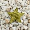 Pin Estrella Brisa amarilla Bondesio