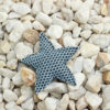 Pin Estrella Brisa azul Bondesio