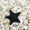 Pin Estrella Brisa negra Bondesio